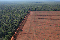 Amazon rainforest cleared for agriculture, Brazil