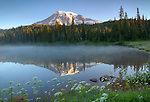 Washington, Cascade Range, Mt. Rainier National Park. Reflection Lake reflects Mount Rainier with steam on a clear morning in late summer.