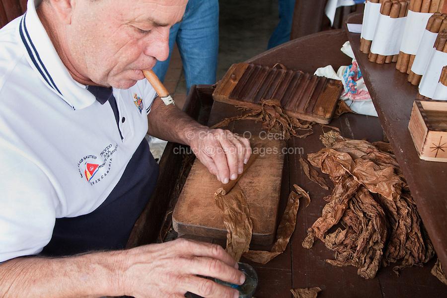 Cuba, Pinar del Rio Region, Vinales (Vinales) Area.  A torcedor (cigar roller) at work.