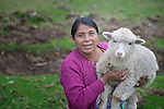 Teresa Diaz shows one of her sheep in San Luis, a small Mam-speaking Maya village in Comitancillo, Guatemala. Women in the community have worked together on several agricultural and animal raising projects with help from the Maya Mam Association for Investigation and Development (AMMID).
