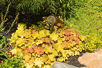Heuchera with garden globe ornament