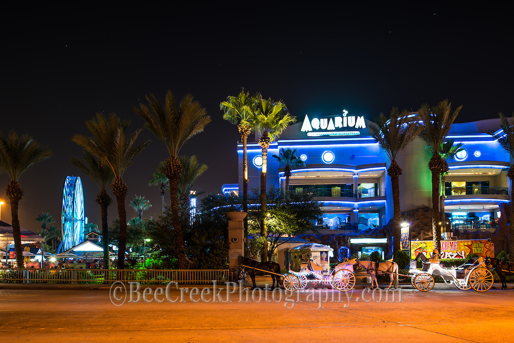 This colorful image is of the Houston Aquarium at night with horse and buggy carriages lined up waiting for fares.  You can see the aqua blue ferris wheel and insiide are two restaurant a train that run through out the park with many fish and reptiles in different theme area.