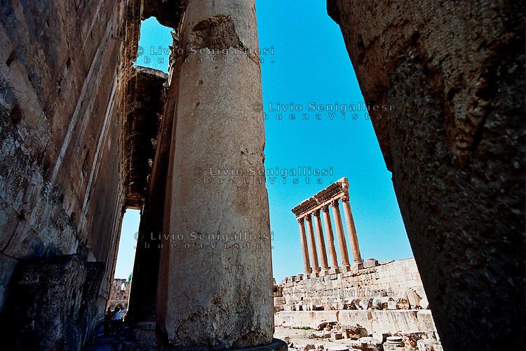 Libano livio senigalliesi archive for Citta della siria che da nome a un pino