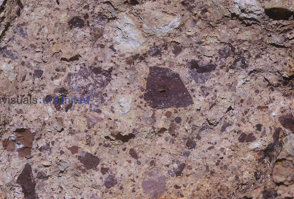 Volcanic breccia rock, Ajo Mountains, Organ Pipe National Monument, Arizona, USA.