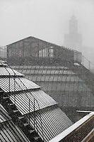 New Caledonia Glasshouse (formerly The Mexican Hothouse), 1830s, Rohault de Fleury, Jardin des Plantes, Museum National d'Histoire Naturelle, Paris, France, and Plant History Glasshouse (formerly Australian Glasshouse), 1830s, Charles Rohault de Fleury. High angle view of the roofs during a snow storm, with the Grande Mosquee de Paris (Great Mosque of Paris) in the background. The New Caledonia Glasshouse, or Hothouse, was the first French glass and iron building.