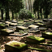 Grave stones in a Soviet Army cemetery. . CHECK with MRM/FNA