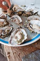 Sea Food at El Maviri island outside of Los Mochis, Sinaloa, Mexico. Aromas y Sabores with Chef Patricia Quintana