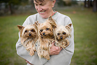 Three Yorkshire terriers and their owner at Camp Winnaribbun, a dog camp, at Lake Tahoe.