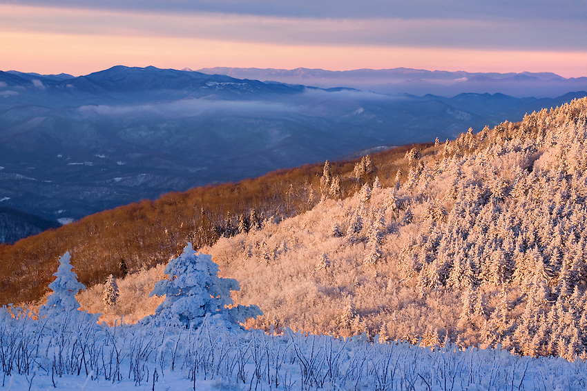 """""""SHADES OF WINTER"""" -- Sunrise light illuminates some areas of this winter scene while leaving the rest in icy shadow. Photographed in the Roan Highlands area of eastern Tennessee and western North Carolina."""
