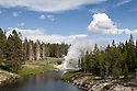 WY00584-00...WYOMING - Riverside Geyser along the Firehole River in the Upper Geyser Basin of Yellowstone National Park.