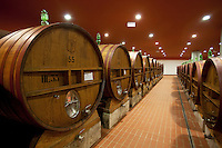 Italy. Tuscany. Villa A Sesta is part of the village Castelnuovo. Wine cellar from the Agricola Tattoni Villa A Sesta. Wooden barrels, made in France by the company Seguin Moreau. 18.09.10 © 2010 Didier Ruef