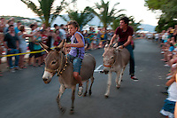 Lumbarda, Korcula, Croatia, July 2011. The Donkey races of Lumbarda are coming back into tradition. Korčula is laced with hidden coves, rolling hills and a walled medieval town. The green forests that cover Korcula inspired the Greek settlers to call the island Korkyra Melaina (Black Korčula).  It is the largest island in an archipelago of 48, off the Dalmatian coast near Dubrovnik and has plenty of opportunities for scenic drives, hiking tours and boat trips to the outlying islands. Photo by Frits Meyst/Adventure4ever.com