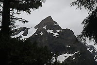 Jagged peaks seen from the Hoh River Trail. The Hoh River trail in Olympic National Park starts in the mossy and lush Hoh Rain Forest. From there you climb over 5,000 ft. in elevation along towering trees and rock to overlook the windswept Blue Glacier on Mt. Olympus. Tracing your steps back to the Hoh River visitors center the hike covers over 36 miles of diverse climate and ecosystems ranging from temperate rain forest to alpine.
