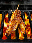 Chicken Tikka marinated chicken strips being cooked over hot charcoals. Indian food photos, pictures & images.