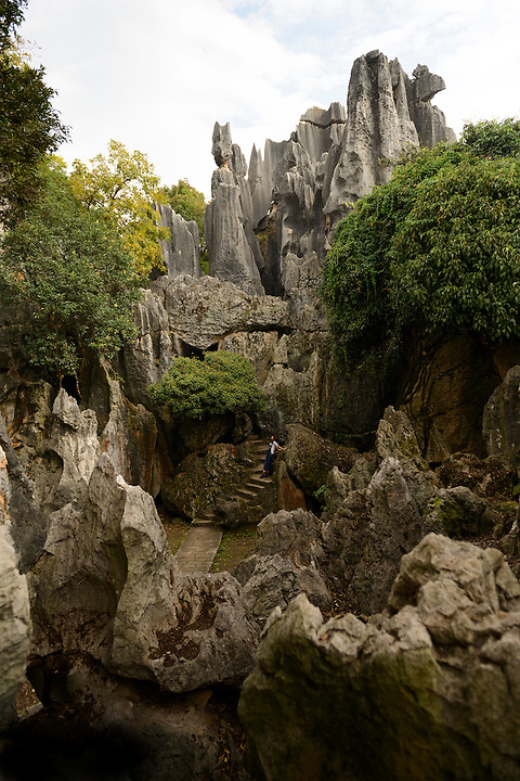 """Shilin stone forest, Kunming, Yunnan, China. 6 November 2012.  The """"stone forest"""" is made up of spectacular limestone formations and is on the UNESCO World Heritage List."""