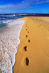 Footprints in sand along the surf at Tunnels Beach, Na Pali Coast, Island of Kauai, Hawaii USA