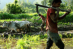 Farmers work the land in a remote part of western Nepal on June 21, 2006. (Photo/Scott Dalton)
