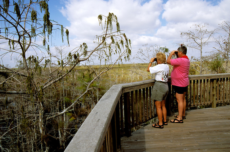FL: Florida Everglades National Park,.Birders and birdwatching at Pa-hayokee..Photo Copyright: Lee Foster, lee@fostertravel.com, www.fostertravel.com, (510) 549-2202.Image: flever226