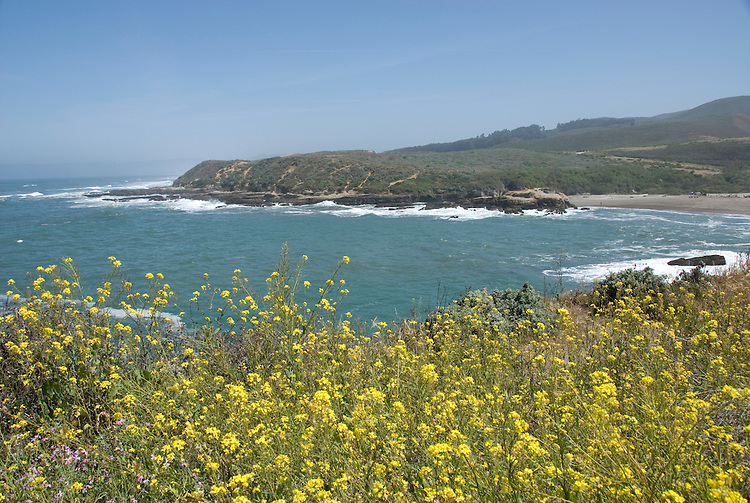 California, San Luis Obispo County: Montana de Oro state park offers scenic coastal views and tide pool exploring..Photo caluis177-70905..Photo copyright Lee Foster, www.fostertravel.com, 510-549-2202, lee@fostertravel.com