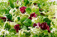Fresh green salad leaves food photos