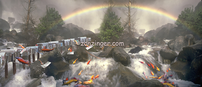 Fish, Koi, Swimming, stream, cascading, swift current, mailbox, mailing  letters, Composite CGI, funny, humor, comical CGI Backgrounds, ,Beautiful Background