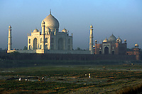 India, Uttar Pradesh, Taj Mahal, farmers tending their fields