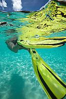 Underwater view of a snorkeler swimming away<br /> Hawksnest Beach<br /> Virgin Islands National Park<br /> St. John, U.S. Virgin Islands