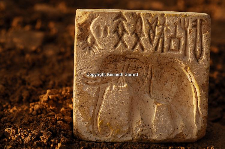 Elephant stamp, artifact; Oxus Civilization; Turkmenistan; Archaeology; Victor Sarianidi; Gonor Depe site; BMAC complex