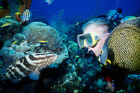 MARINE LIFE: BOAT, REEFS &amp; DIVERS<br /> Grouper and French Angelfish, approach a diver<br /> French Angelfish are found in the western Atlantic Ocean and the Gulf of Mexico. The mouth and gills of the grouper form a powerful sucking system used to catch prey. Both fishes are commonly found in reefs.