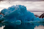 Icebergs and Ice