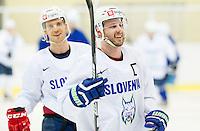 20160208: SLO, Ice Hockey - Training camp of Slovenian Ice Hockey National Team in Bled