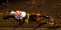 ARCADIA, CA - MARCH 11: Follow Me Crev #6 races in the Santa Anita Handicap at Santa Anita Park  on March 11, 2017 in Arcadia, California. (Photo by Alex Evers/Eclipse Sportswire/Getty Images)