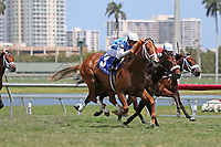 HALLANDALE BEACH, FL - APRIL 01:  #3 All Included (KY) wth jockey Javier Castellano on board, comes from behind to win the Appleton Stakes (Grade III) at Gulfstream Park on April 01, 2017 in Hallandale Beach, Florida. (Photo by Liz Lamont/Eclipse Sportswire/Getty Images)