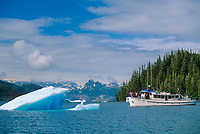 Tourboat and floating glacier iceberg from the Columbia Glacier, Glacier Island, Prince William Sound, Alaska
