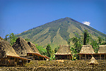 Tradiotnal homes of Luba Village, Bajawa, Flores, with the volcano Mount Inerie as backdop