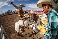 Campeonato Nacional  Rodeo 2016 día3parte2
