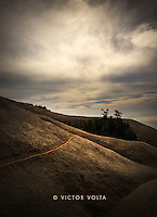 Mt. Tamalpais/Muir Woods