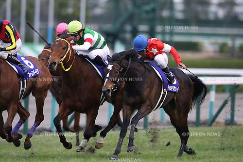 (R-L) Red Reveur (Keita Tosaki), Harp Star (Yuga Kawada),<br /> DECEMBER 8, 2013 - Horse Racing :<br /> Red Reveur ridden by Keita Tosaki wins the Hanshin Juvenile Fillies at Hanshin Racecourse in Hyogo, Japan. (Photo by Eiichi Yamane/AFLO)