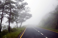 Road to Cherrapunji, in East Khasi Hills - the wettest place on Earth witnessing maximum annual rain fall, located in north east of India. Arindam Mukherjee