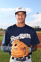 Arizona League 2014