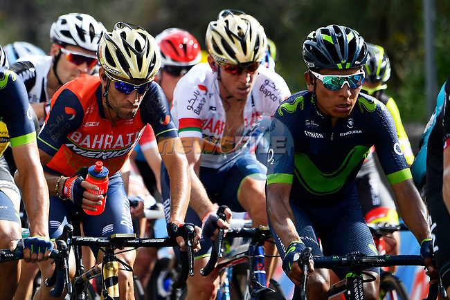 The peloton including Vincenzo Nibali (ITA) Bahrain-Merida and Nairo Quintana (COL) Movistar Team in action during Stage 4 of the 100th edition of the Giro d'Italia 2017, running 181km from Cefalu to Mount Etna, Sicily, Italy. 9th May 2017.<br /> Picture: LaPresse/Fabio Ferrari | Cyclefile<br /> <br /> <br /> All photos usage must carry mandatory copyright credit (&copy; Cyclefile | LaPresse/Fabio Ferrari)