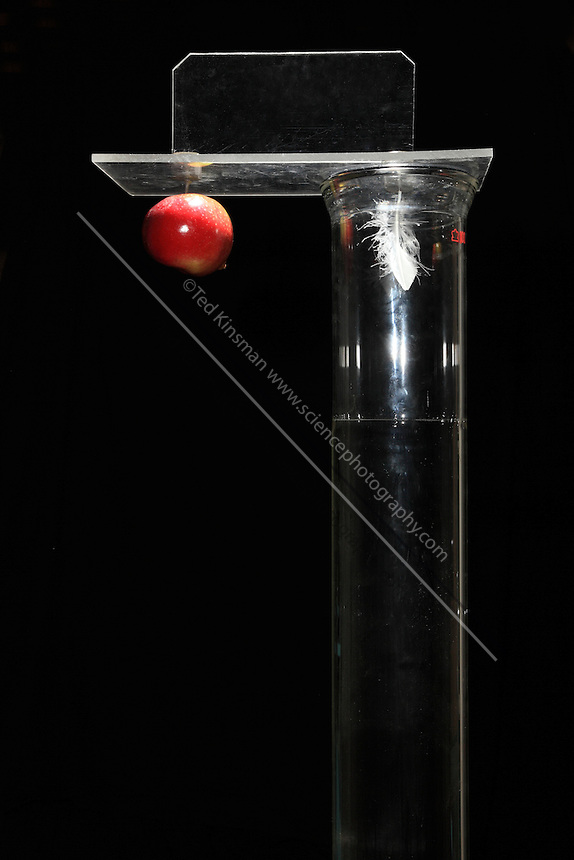 An apple and a feather are released at the same time.  The feather that is falling in a vacuum chamber falls at the same rate as the apple in the air.  The feather and the apple have metal pins in them that are attracted to the strong magnets in the release mechanism that can be seen at the top of the image.  The flash is triggered at 1/20th of a second interval.  The apple and feather do accelerate at the same rate..The vacuum pressure was 30 microns.