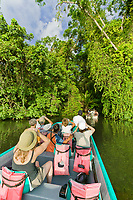 Jungle canal tour in Tortuguero, Costa Rica, Central America.