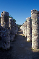 Group of One Thousand Columns at the Mayan ruins of Chichen Itza, Yucatan, Mexico