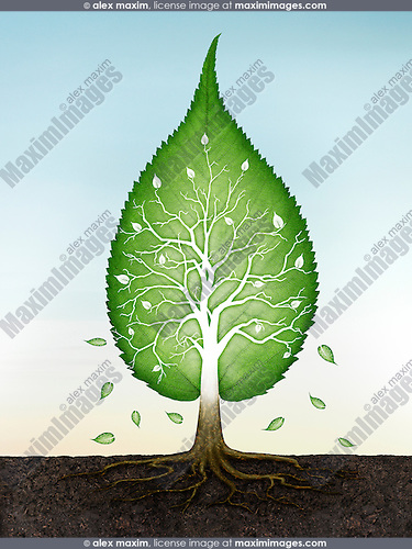 Green leaf shaped tree with roots in the earth spiritual zen concept on blue sky background. Conceptual photo illustration.