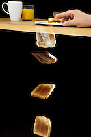 PROBABILITY: FALLING TOAST HYPOTHESIS<br />