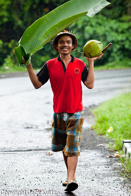 Apr. 23 - UBUD, BALI, INDONESIA:    A man uses a banana leaf as an umbrella during a rain storm in Ubud, Bali. Photo by Jack Kurtz/ZUMA Press.