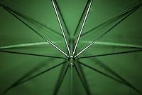 [026/365] Studio Umbrella
