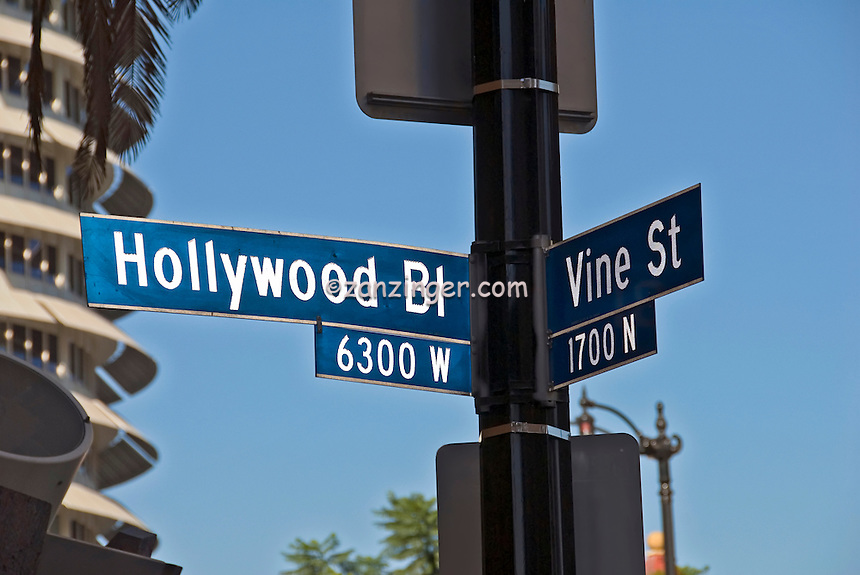Militant Angeleno Street Signs Of The Times