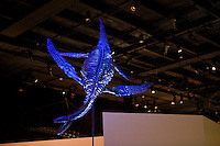 Stock photo of a Diving Plesiosaurus suspended from the ceiling at the new Paleontology Hall at the Houston Museum of Natural Science